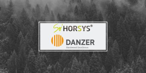 client_sohorsys_danzer